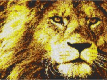 Vorlage für Ministeck Lion1 80x60cm yellow Style als Volldruck