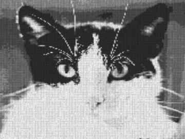 Vorlage für Ministeck Cat 80x60cm schwarz/weiß als Entwurfdruck