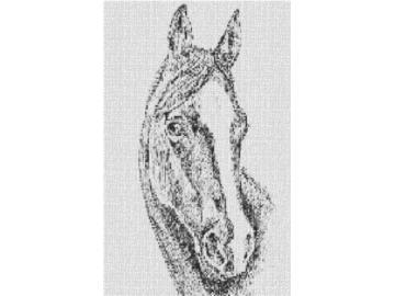 Vorlage für Ministeck Pferdekopf 60x80cm schwarz/weiß als Volldruck