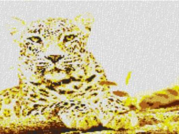Vorlage für Ministeck Leopard 80x60cm yellow Style als Entwurfdruck