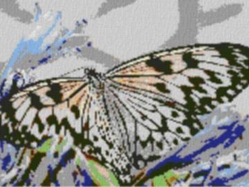 Vorlage für Ministeck Butterfly2 80x60cm cartoon Style als Entwurfdruck