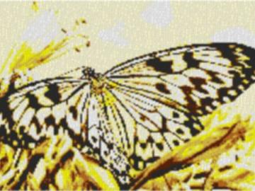 Vorlage für Ministeck Butterfly2 80x60cm yellow Style als Entwurfdruck