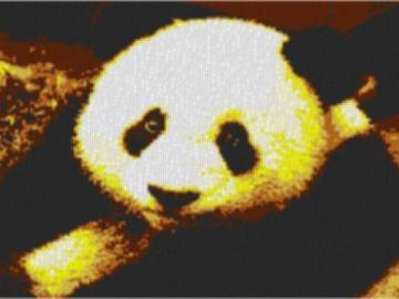 Vorlage für Ministeck Panda 80x60cm yellow Style als Entwurfdruck