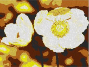 Vorlage für Ministeck Anemone 80x60cm yellow Style als Entwurfdruck
