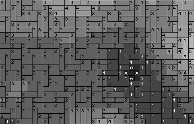 Vorlage für Ministeck Anemone 80x60cm schwarz/weiß per eMail