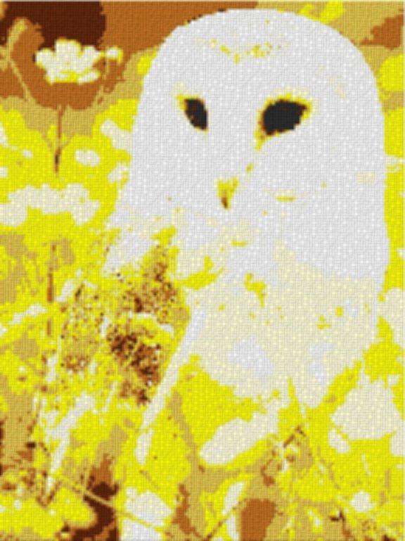 Vorlage für Ministeck Eule 60x80cm yellow Style als Entwurfdruck